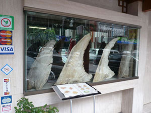 Shark Fin Restaurants