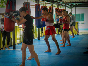 Major Muaythai Gyms